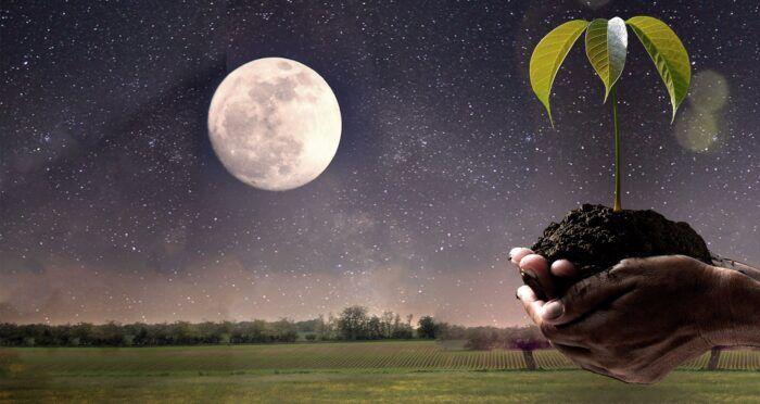 Лунные календари. Насколько можно им доверять