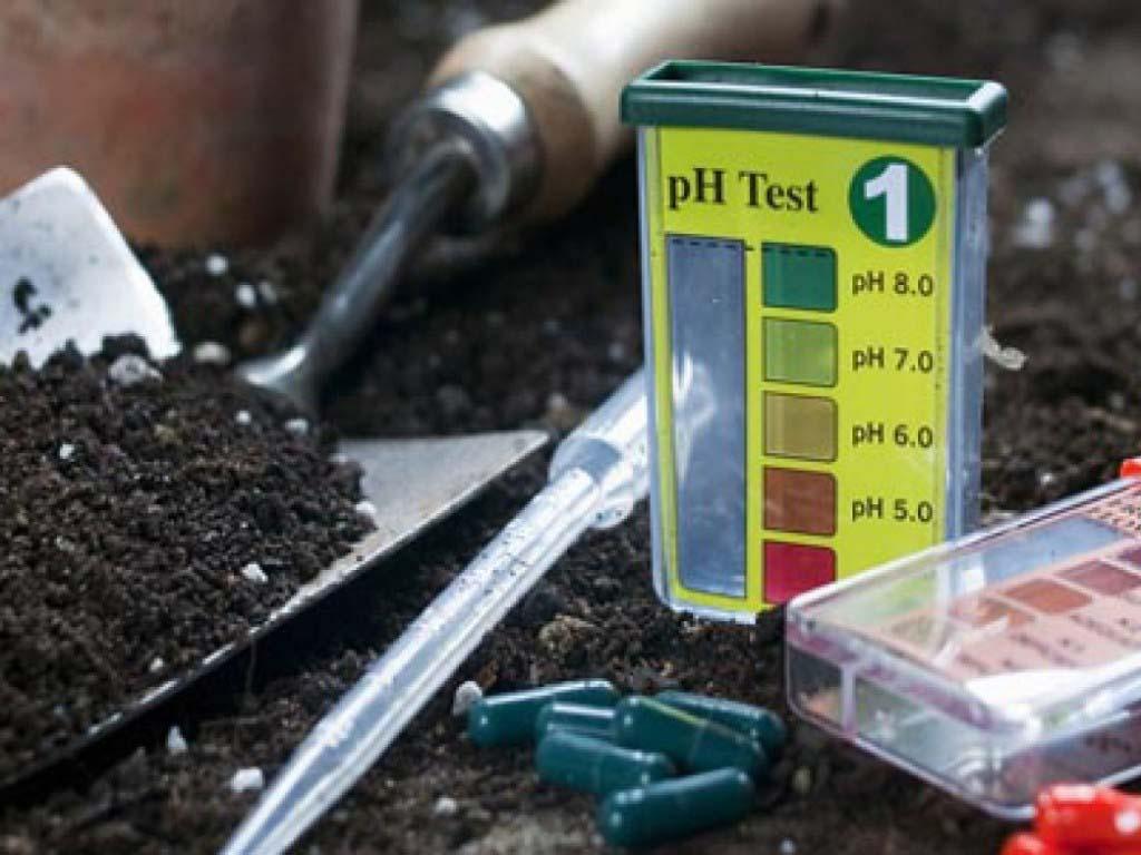 Нейтрализация кислотности почвы.jpg