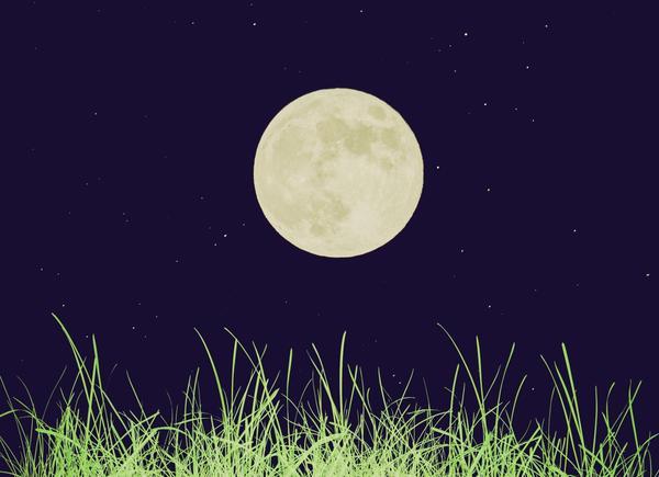 Какая польза от лунного календаря