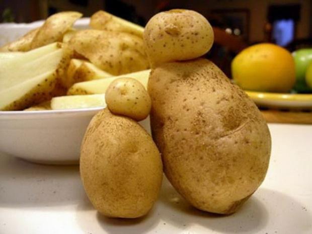 Сорт картофеля Аргос.jpg