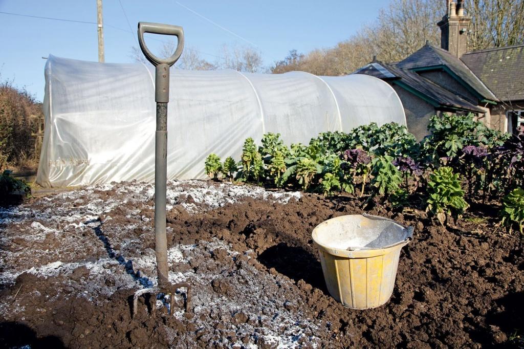 Внесение извести для нейтрализации почвы.jpg