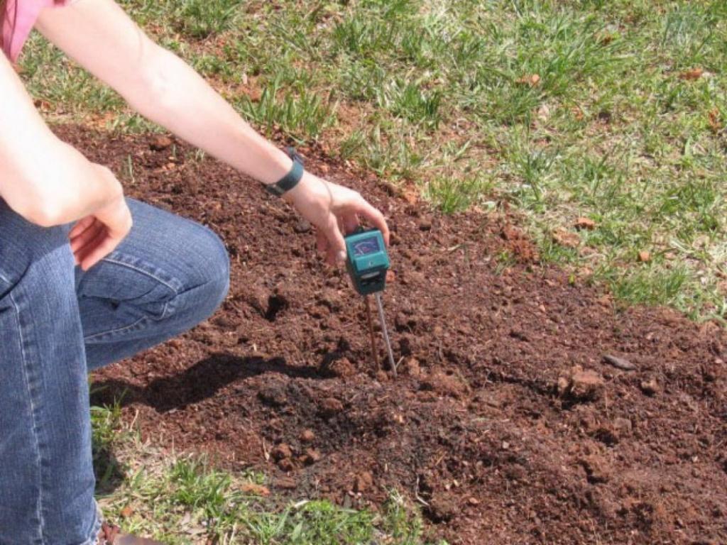 Определение кислотности почвы специальными приборами.jpg