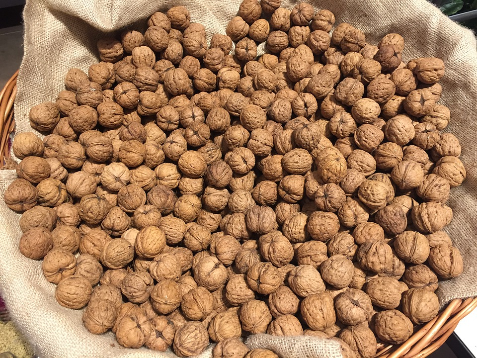 Изображение - Грецкие орехи как бизнес f3b62e57e78b63a35e09bd07dc270afb