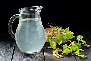 Березовый сок, его полезные и лечебные свойства и способы сбора