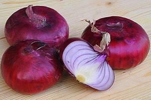 полезные свойства ялтинского лука